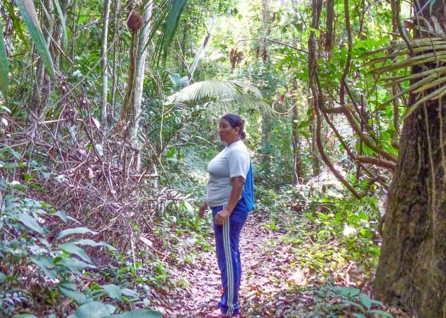 GUia na Trilha do Jamaraquá P1000731_edited_edited_edited