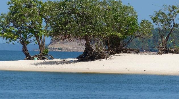As areias brancas do Rio Tapajós, no Pará, começam a aparecer a partir de julho. Alter do Chão é a mais conhecida mas o Tapajós é repleto de lindas praias escondidas entre o rio e a floresta.