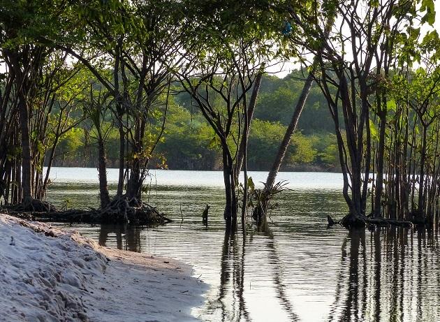 Lago Negro Alter do Chão