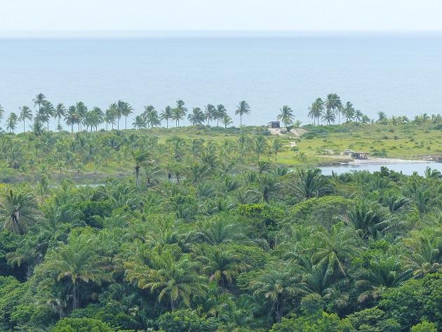 O que fazer Península de Maraú - Farol 1