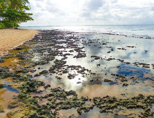 O que fazer na Península de Maraú 5