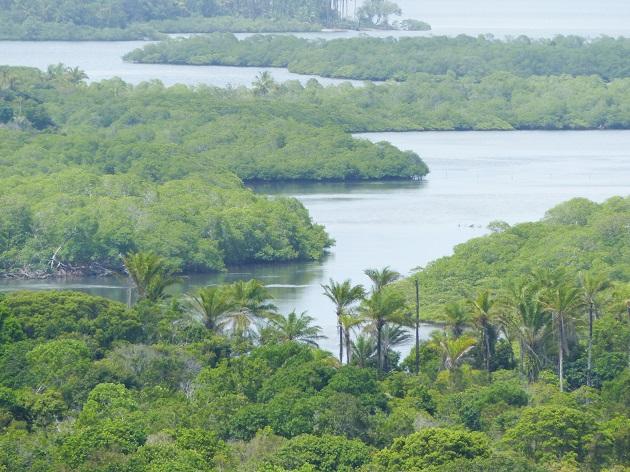 O que fazer na Península de Maraú - Baía de Camamu 2