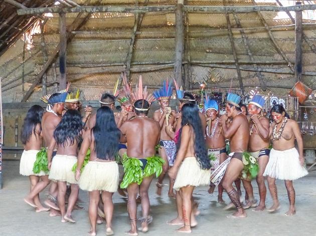 O que fazer em Manaus 3