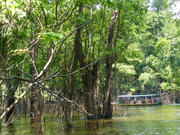 O que ver em Manaus 3