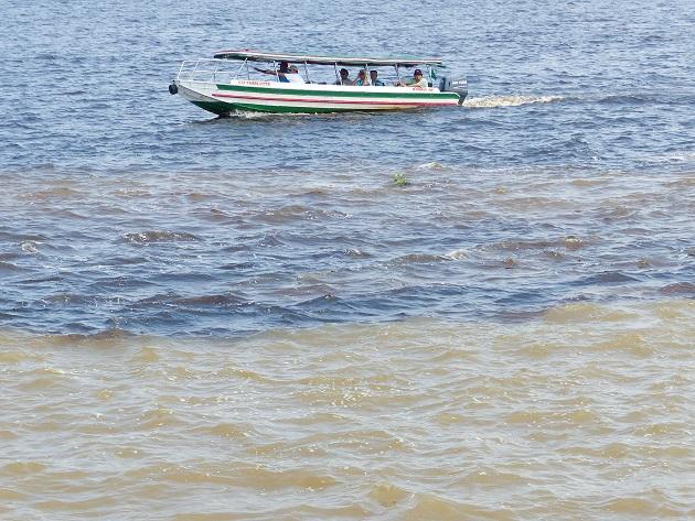 O que ver no Encontro das Águas de Manaus