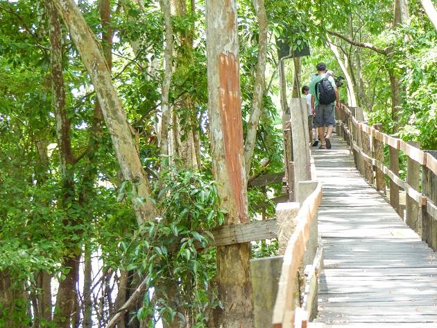 Passeios em Manaus 2