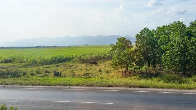 Cuba - Valle de los Viñales 1