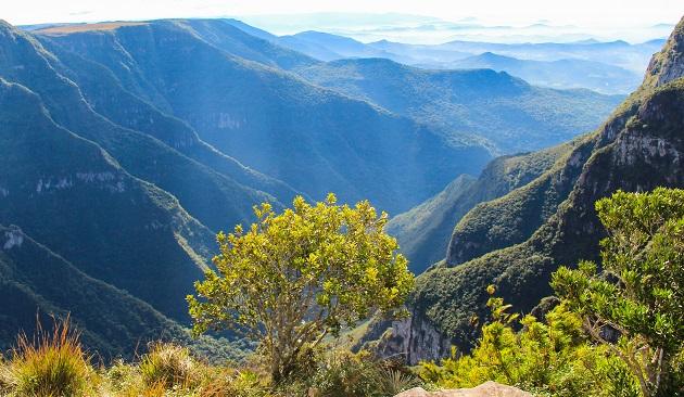 De Cambará do Sul a Urubici: Um roteiro pelos Aparados da Serra