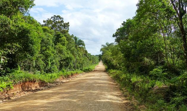 Trecho final da estrada para Guaraqueçaba