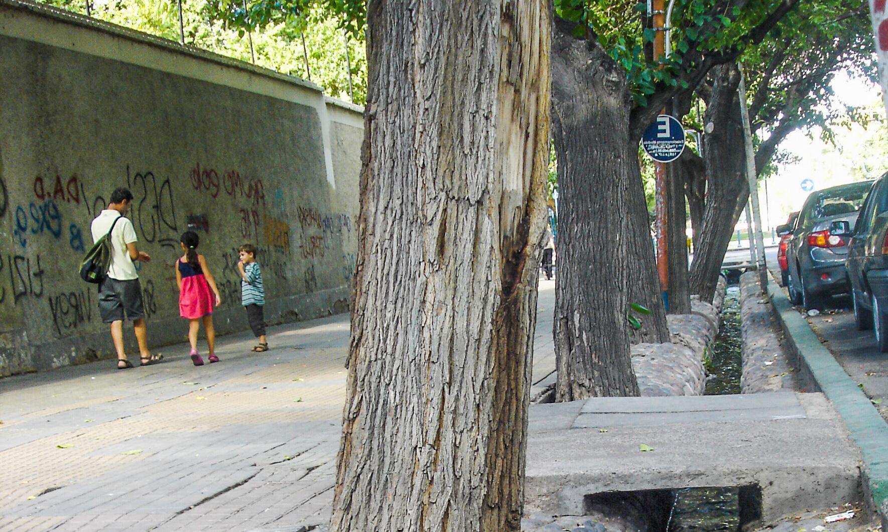 Canais de irrigação nas ruas de Mendoza.