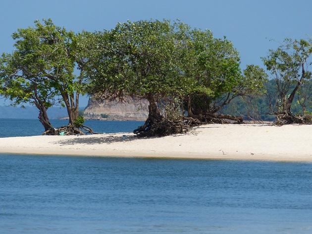 Entre o Rio Tapajós e a Floresta Amazônica