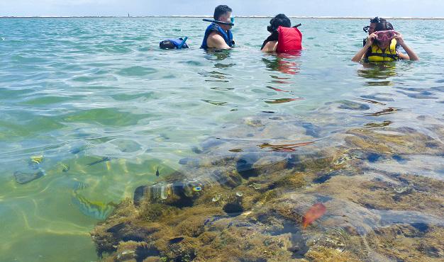 Taipu de Fora: como chegar e aproveitar a melhor praia de Maraú